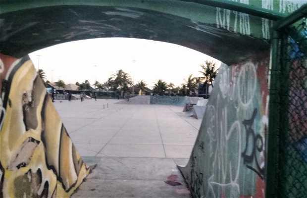 Pista de Skate Cara de Sapo