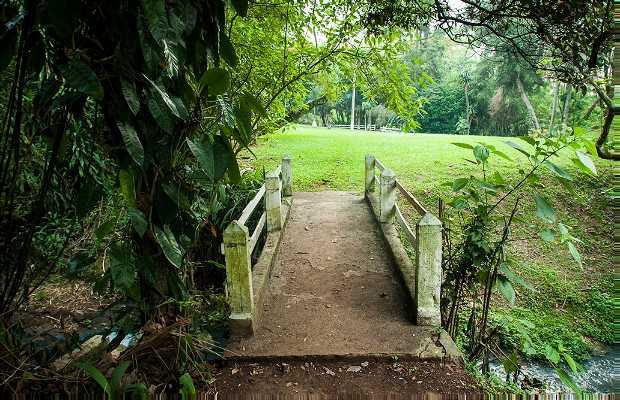 Jardin de Nirvana