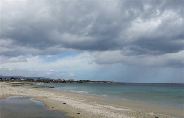 Playa Arealonga San Miguel - Reinante