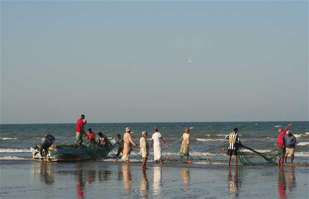 Playa de Seeb Souk
