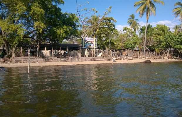 Isla Madre Sal