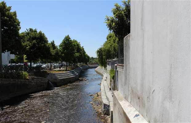Río Caster, pasando por Ovar