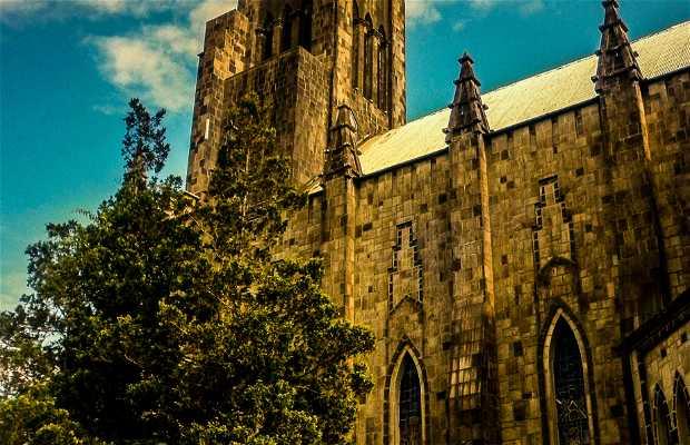 Cathédrale de Pedra