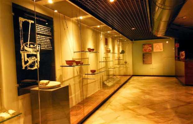 Museu Termas Romanas de Campo Valdés