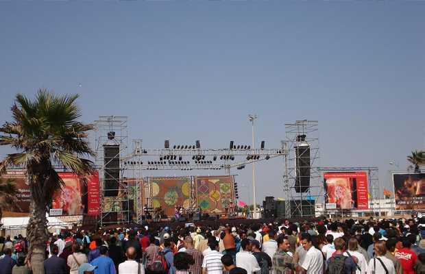 Festival Gnaoua de Essaouira
