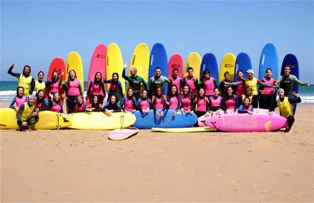 Escuela de Surf La Isla Santa Marina