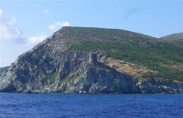 Torre ronda