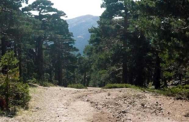 Sentiero Schmid di Navacerrada