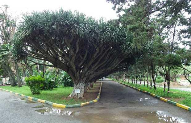 Jardines Nouzhat Hassan