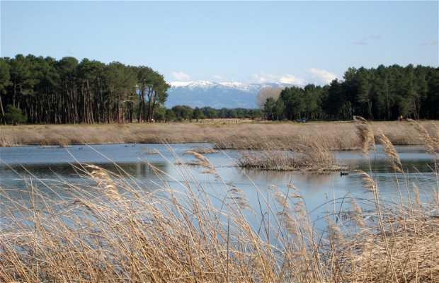 Lagunas de Hontalbilla