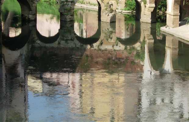Puente Barche
