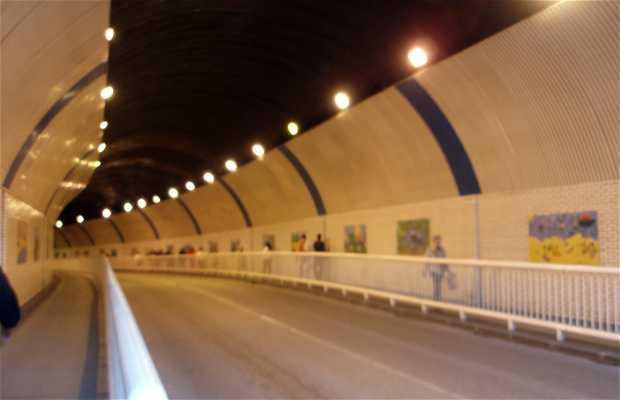 Pasaje de Peña o El Túnel