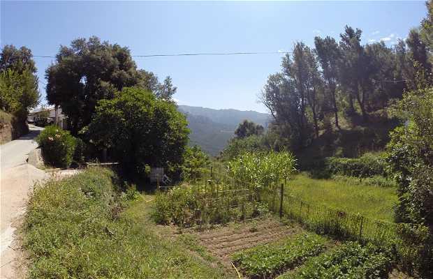 Comuna de Tavaco
