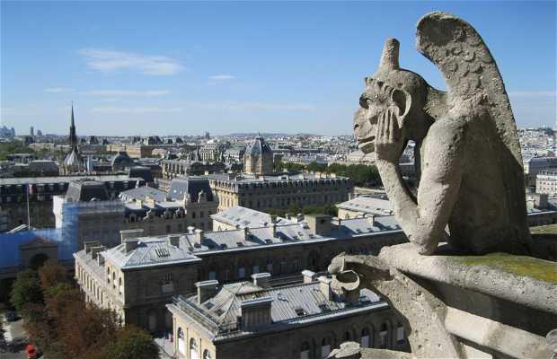 Belvedere da Notre Dame
