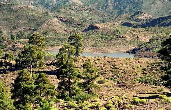 Natural park of Pilancones