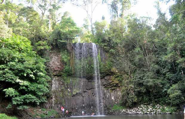 Cachoeira Millaa Millaa