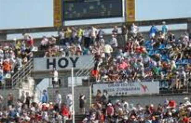 Campo de fútbol Nuevo Vivero