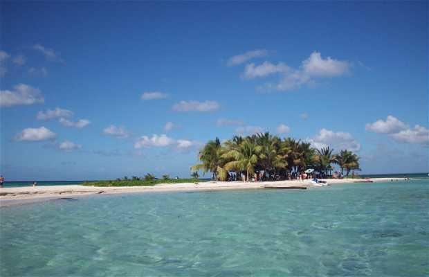 Isla Caret