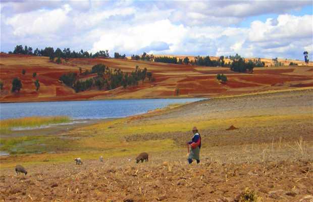 Laguna de Huaypo (Cuzco)