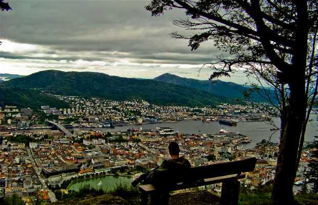 Monte Fløyen