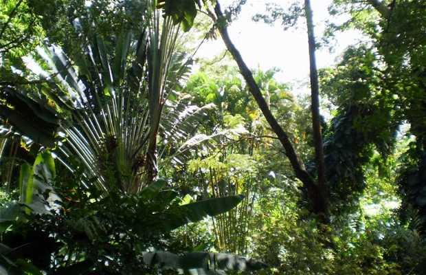 Les Jardins de Valombreuse Parc floral et animalier