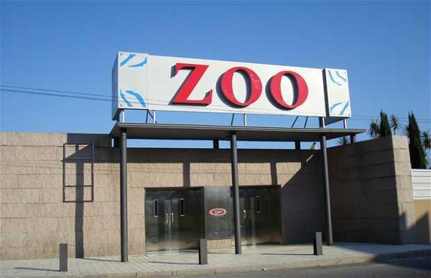 Discoteca Zoo Club