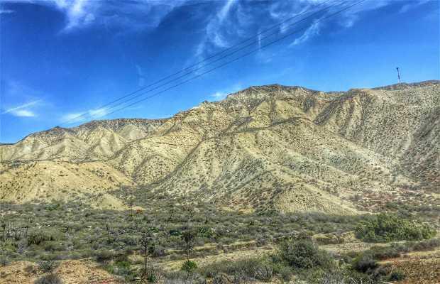 Valle de san quintin