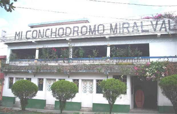 Mi Conchodromo Miralvalle