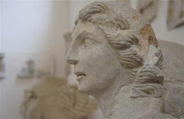 Museo de Antigüedades
