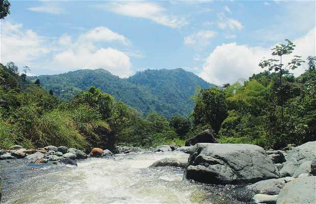 Reserva Natural Anahuac