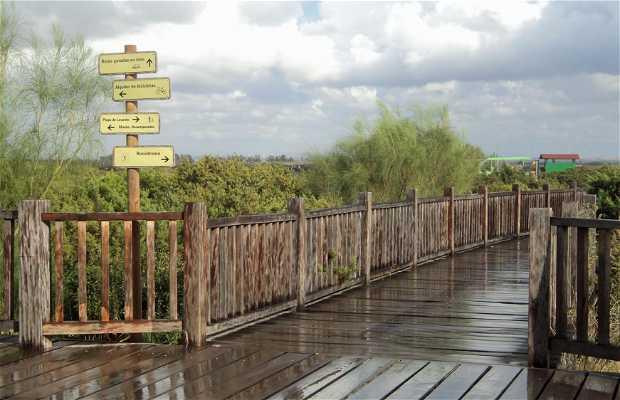 Parque Los Toruños