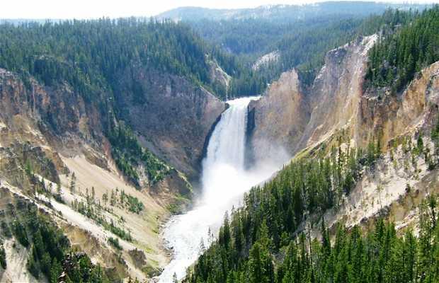 Lower Falls en Yellowstone