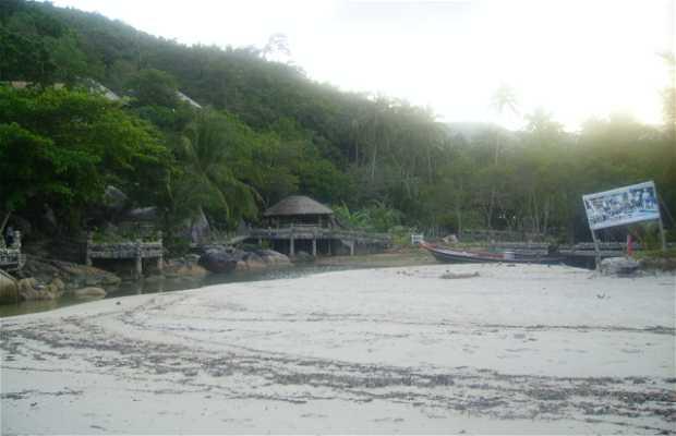 Plage Thong Nai Pan Noi