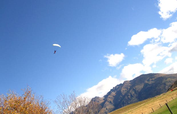 Skydive Nzone