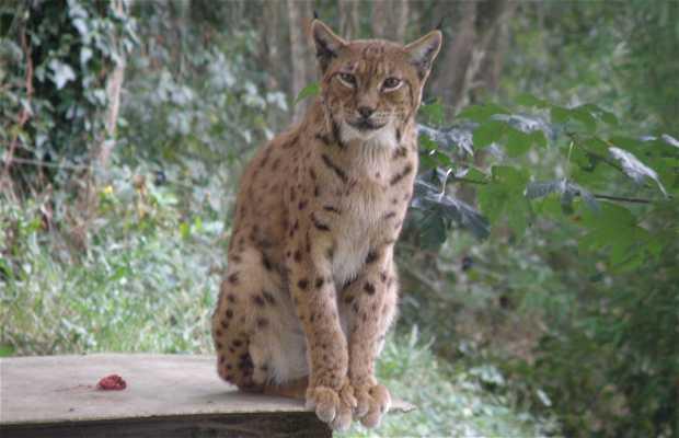 Basondo, refugio de fauna silvestre