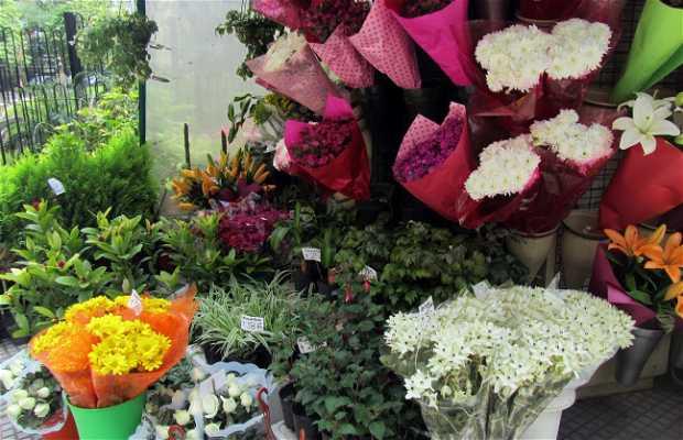 Quiosco de Flores