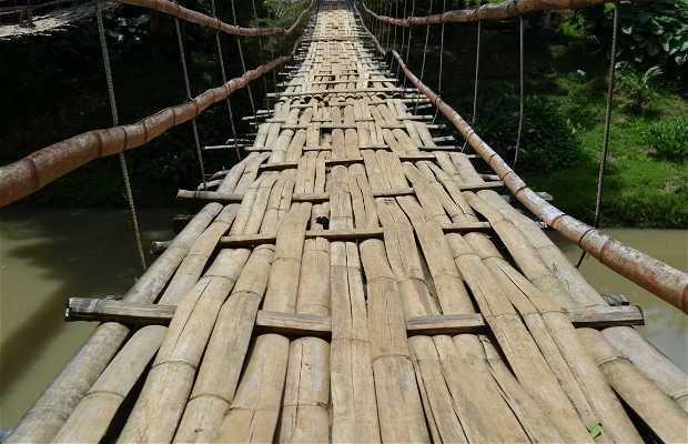 Ponte suspensa de bambu