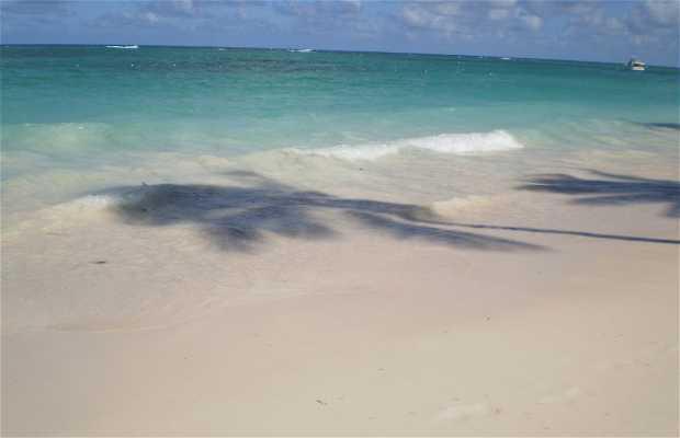 Playa El Cortecito a Punta Cana