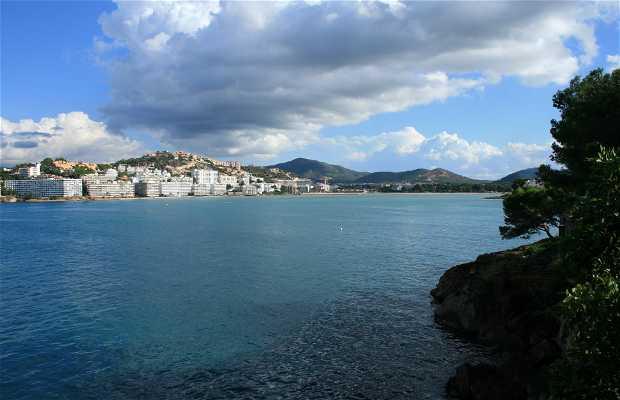 Cruz de Santa Ponsa-Calvia-Palma de Mallorca