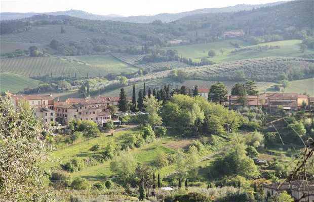 Museo del Vino de la Vernaccia