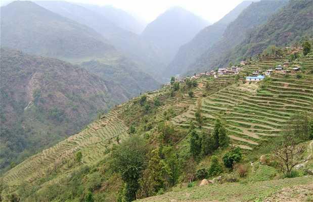 Terrazas en Annapurna