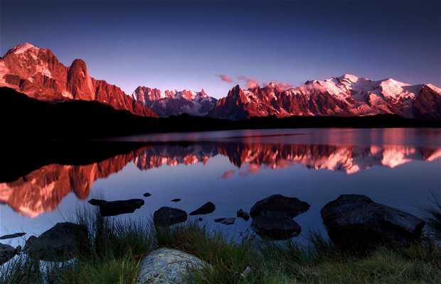 Reserve naturelle des Aiguilles Rouges a Chamonix-Mont-Blanc