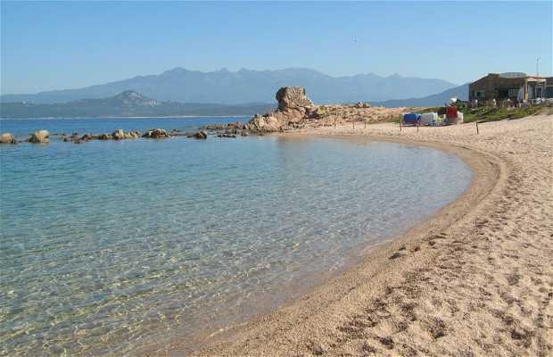 Playa La Tonnara