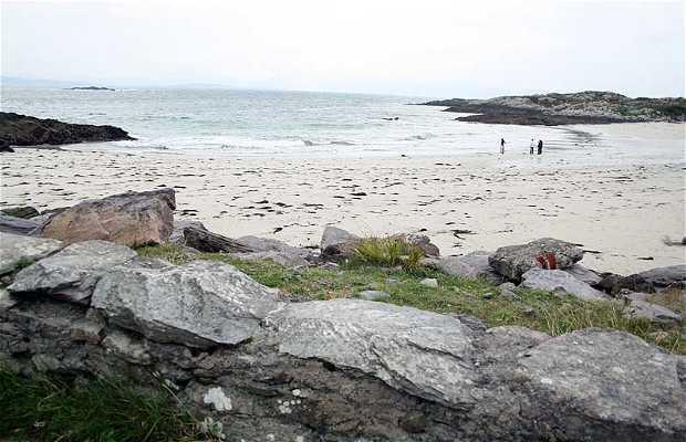 La spiagge di Castle Cove a Kerry County