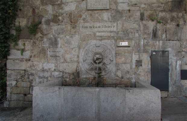 Fonte da Rua de D. Pedro V