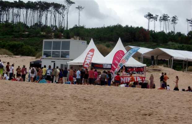 Cantabrian Surf School