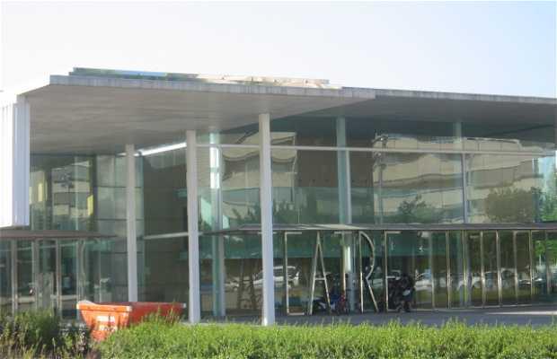 Teatro Auditorio