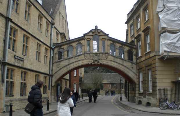 New College Lane