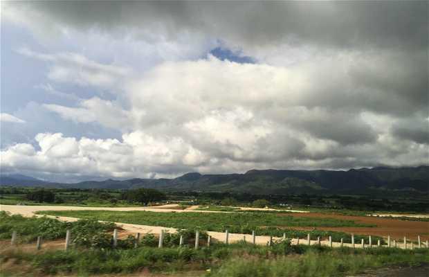 San Pedro Lagunillas
