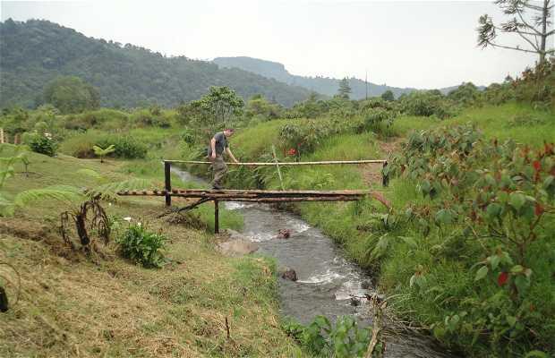 Réserve Naturelle Otún Quimbaya